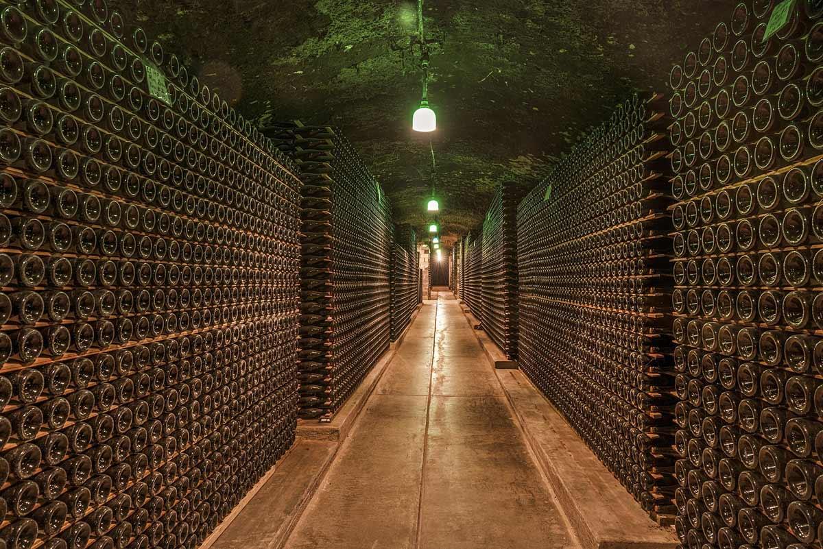 winemaking in Serbia