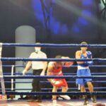 boxing-belgrade-rakovica
