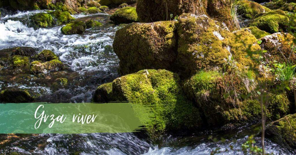 Grza river